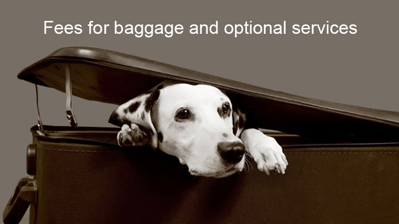 baggage optional services